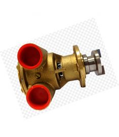 Raw water pump - Note: P4.21